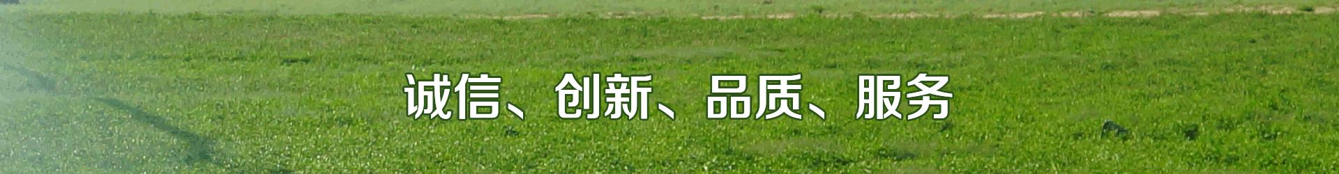 智能灌溉系统